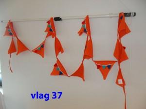 Vlaggenlijn 37