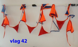 Vlaggenlijn 42