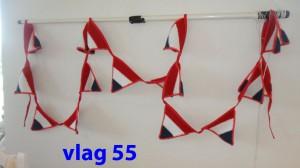 Vlaggenlijn 55
