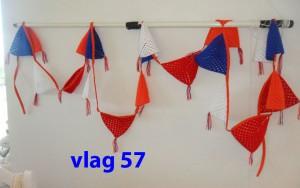 Vlaggenlijn 57